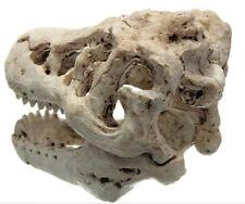 Aquarium Ornament Dinasaur Skull Landscape Decorations Resin PIne Wood Exquisite