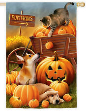 """29"""" x 43"""" BOMBS AWAY!! Cat Knocking Pumpkins on Dogs 2 SIDED Large Banner Flag"""