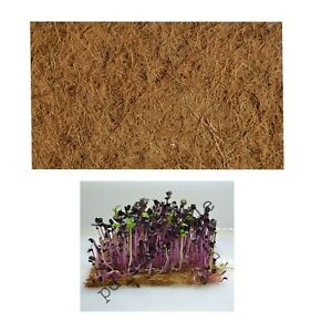 Microgreen Coconut Coir Husk Natural Biodegradable Fibre Mats x 4