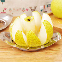 APPLE CUTTER WEDGER CORER DIVIDER SLICER PEAR FRUIT STAINLESS STEEL