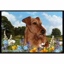 Irish Terrier Summer Flowers Floor Mat