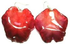 earrings Real petals-orchid-