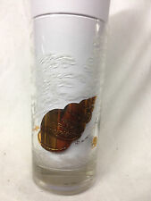 Briard Shell Gold Glass Tumbler 14 Oz Gold Shells In Frosted Surf