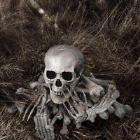 28pcs Skeletons Bones Skulls Prop Set Halloween Haunter Haunted House Decoration