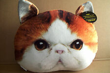 EXPRESSIONS PLUSH THROW PILLOW LIVE PICTURE RED HAIR TABBY CAT - BROWN EYES