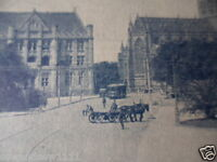 ANTIQUE VINTAGE OLD PHOTO POSTCARD QUEENS SQ ST MARYS SYDNEY HORSE AND CART TRAM