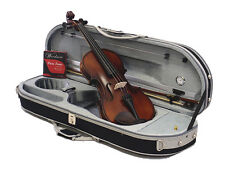 New 4/4 Student Antique Style Violin+Bow+VC-820GLS Case+Rosin+Free String Set