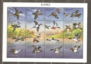 Belarus: full sheet of 16 mint stamps, local birds, 1996, Mi#163-179, MNH.