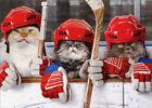 Hockey Cats Funny Birthday Card - Greeting Card by Avanti photo