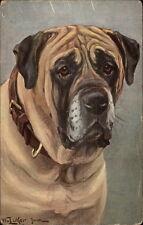Luker - Bullmastiff Dog c19190 Postcard