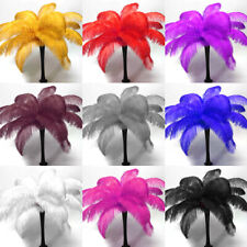5/10/25pcs 14-16in Natural Ostrich Feathers Crafts Making Wedding Party Decor