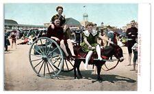 Early 1900s A Donkey Party, Atlantic City, NJ Postcard