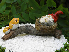 Miniature Dollhouse FAIRY GARDEN ~ Gnome Napping in Bird Nest ~ NEW