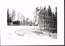 VINTAGE PHOTOGRAPH '43 TRUCKS CAMP WHITEHORSE CANADA YUKON CANOL PIPELINE PHOTO