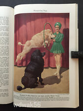 1943-11 NOVEMBER NATIONAL GEOGRAPHIC: US NAVY-CRETE-NON SPORTING DOGS ART-RUSSIA