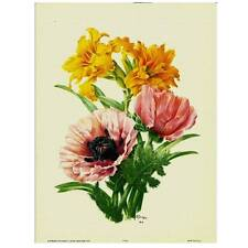 Flowers by Seguy- #912 - Individual Full Colour Vintage Lithoprint
