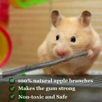 Natural Wood Chew Sticks Twigs For Pets Rabbit Hamster Pig Guinea Z1O0 50g L8R3