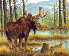 ACEO card, Moose, Moose decor, Forest, Water, Trees, Bull Moose, Cabin Decor