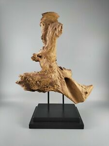 Driftwood Sculpture, Natural Decor Mounted on Stand, 37cm