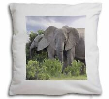 African Decorative Cushions