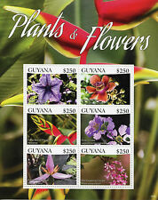 Guyana 2015 MNH Plants & Flowers 6v M/S I Bravo Blue Vein Cannonball Tree Stamps