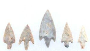 5 Indian Artifact Arrow Points LENAPE Indian Arrowheads LENI PA Delaware River