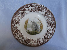 SPODE WOODLAND BIRDS OF PREY WINTER SNOWY OWL 9.25 Inch PLATE RARE BRAND NEW