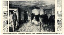 Deutsches Bauerhaus-Wohnzimmer von Russen als Pferdestall genutzt 1. WK 1914