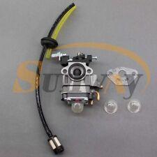Carburateur et Tuyau Kit pour RUIXING H119 26cc Tondeuse à gazon 1E36F Moteur