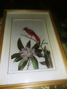 """Vintage Framed With Glass 3-D Real Feather Art Birds Wall Hanging - 10.5 x 7.5 """""""