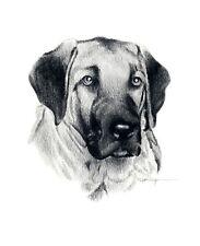 Anatolian Shepherd Pencil Dog Drawing Art Print by Artist Dj Rogers w/Coa