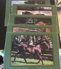 Thoroughbred Placemats set of 5 By Thoroughbred Racing Calendar Famous Horses