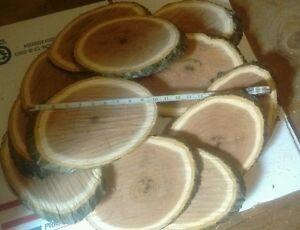 12 Pc,  7-8 in wide, 10-12 in long Oak Log oval Slices Wood Disk Rustic Wedding