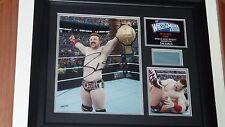WWE plaque Sheamus Combat 28 Signé Autographe COA ultra rare