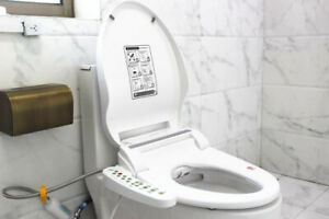 Luxury Automatic Toilet Bidet Seat Cover Auto Wash Warm Air Dry Light and more