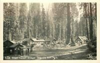 Giant Forest Village Sequoia Park 1940s Tulare California RPPC Postcard 13335