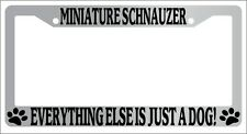 Chrome License Plate Frame Minature Schnauzer Everything Else Is Just A Dog!