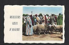 MEILLEURS VOEUX (ALGERIE) Marché aux MOUTONS