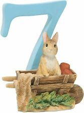 Beatrix Potter Peter Rabbit Birthday Age Number 7 Figurine, A6220