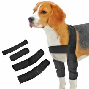 Dog Knee Brace Injuries Leg Brace Surgical Joint Wrap Dog Wounds Heals Canine .