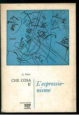 PLEBE ARMANDO CHE COSA E' L'ESPRESSIONISMO UBALDINI 1969 ARTE PITTURA