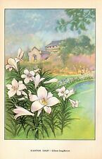"1926 Vintage GARDEN FLOWER ""EASTER LILY"" GORGEOUS COLOR Art Print Lithograph"