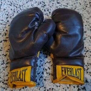 Everlast 2626 Leather Boxing Gloves -16 Ounces 1970's