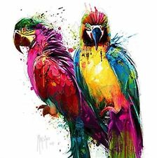 Patrice Murciano: Tropical Colors I Fertig-Bild 70x70 Papagei Wandbild Pop bunt