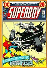 Superboy DC Comic Book-#196(Bronze)/1973