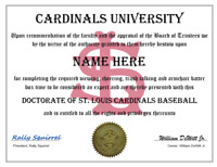 ST. LOUIS CARDINALS PERSONALIZED FAN DIPLOMA, GREAT GIFT