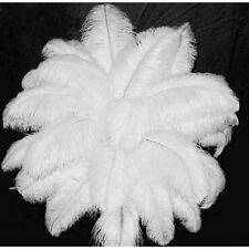 10PCS Wholesale Quality Natural Ostrich Feathers 30-35cm/12-14Inch White Color