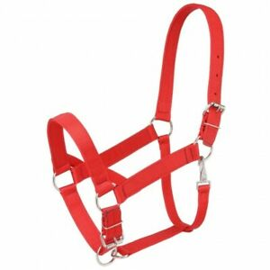 Tough 1 Red Standard Nylon Draft Sized Halter horse tack 50-9550
