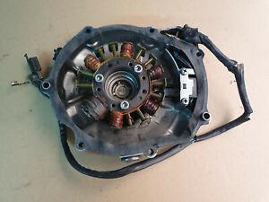 Original Suzuki DR350 90-99 Magneto Stator Coil Generator + Case Cover