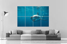 GREAT WHITE SHARK  Wall Art Poster Grand format A0 Large Print